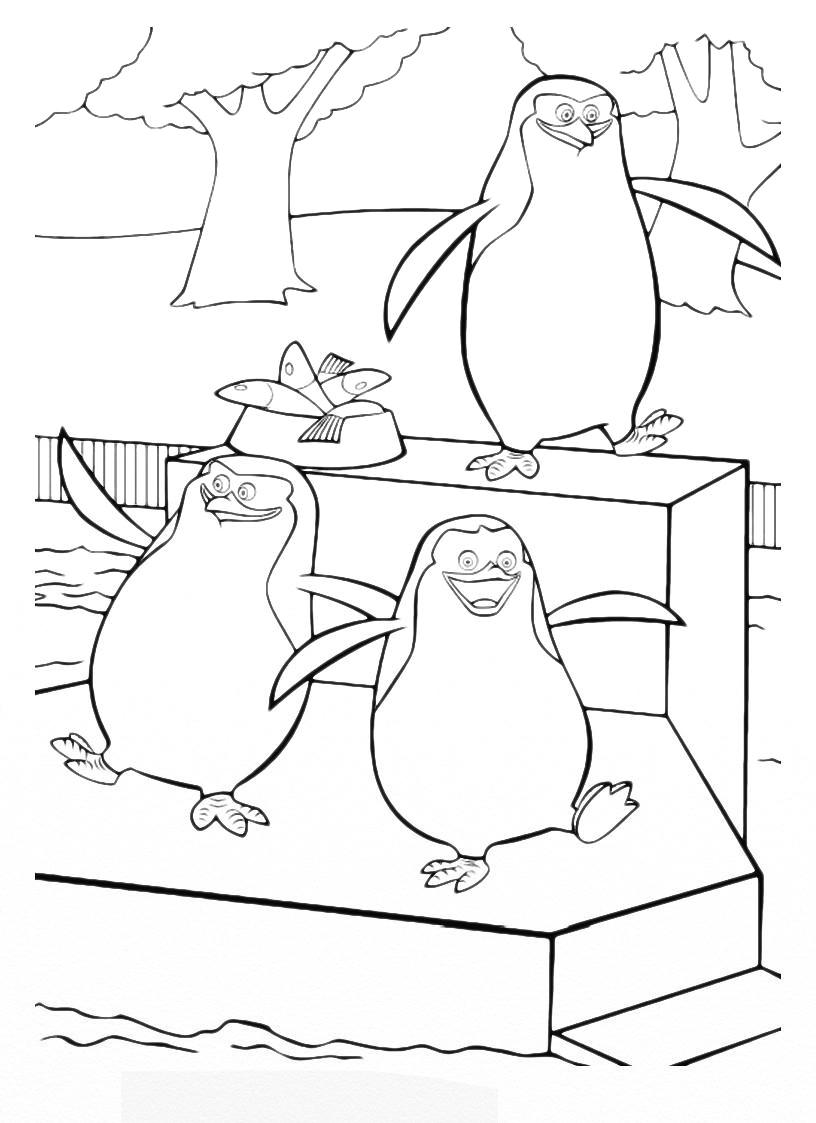 Раскраска пингвины мадагаскар распечатать