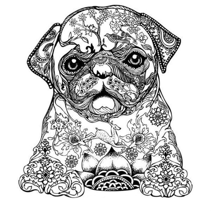 Раскраски антистресс собаки