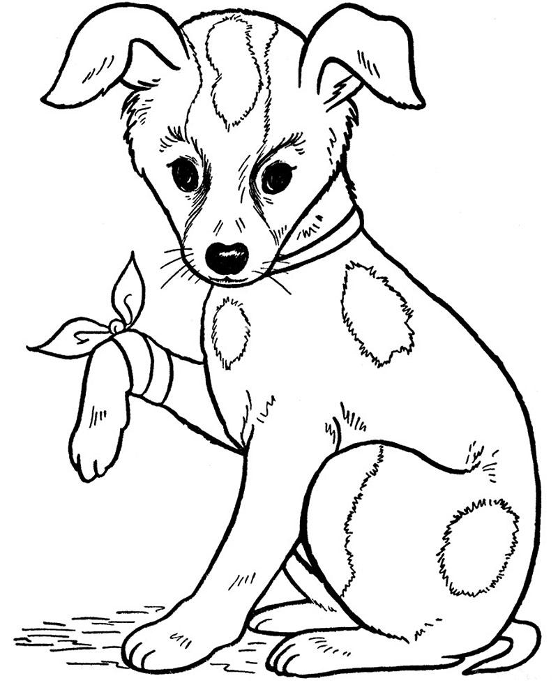 Картинки раскраски с собаками и щенками